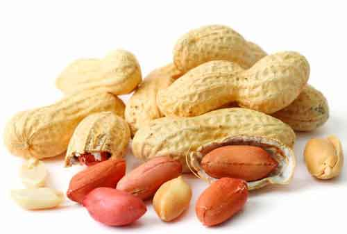 How to gain weight fast - Ground nuts are best to increase weight