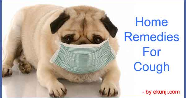 Very Easy Home Remedies for Cough