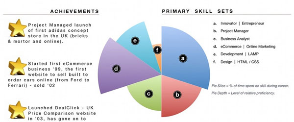 Use Infographics in CV to Make a Good CV