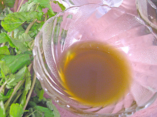 Combination of mint leaves juice, water and honey