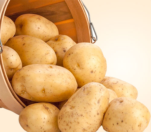 Potato Nutrition And Benefits For Health