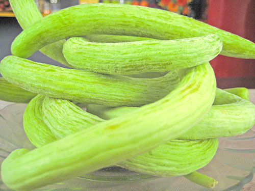 Snake Cucumber Benefits For Health