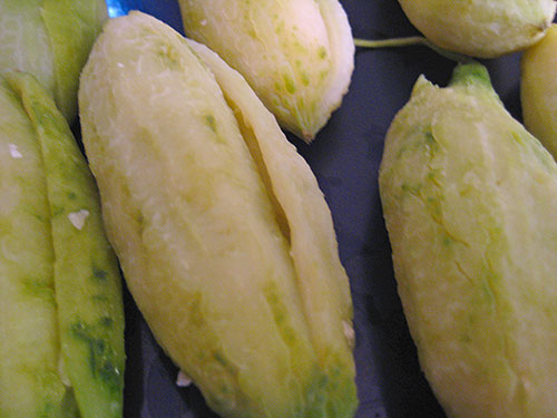 Boiled and squeezed bitter melon